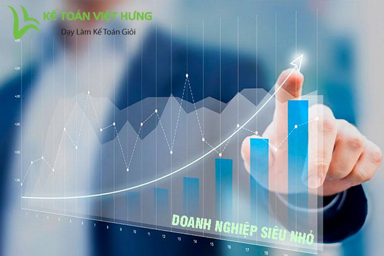 báo cáo tài chính doanh nghiệp siêu nhỏ