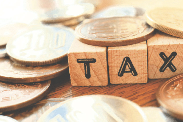 tờ khai thuế môn bài và tờ khai lệ phí môn bài